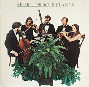 Music for Your Plant Album Cover